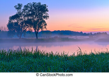 Beautiful foggy dawn over the Narew river. Mazovia, Poland