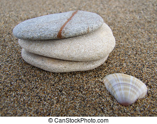 Pebbles and Shell - Pile of three pebbles and a shell on...