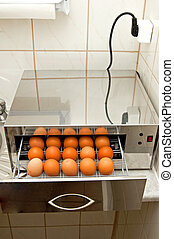 Disinfection of eggs - Disinfection of the eggs device with...
