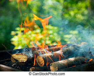 BBQ Fire outdoor Bonfire closeup