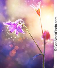 Blomstrar, blommig, abstrakt, purpur, design, mjuk, fokusera