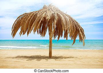 vacaciones, concepto, Palapa, sol, techo, playa, paraguas