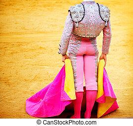 corrida, matador, luta, típico, Espanhol, tourada