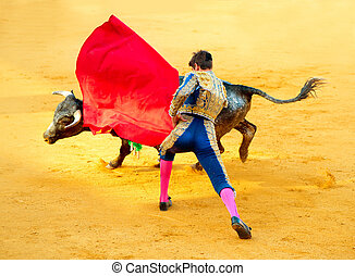 Corrida. Matador Fighting in a typical Spanish Bullfight