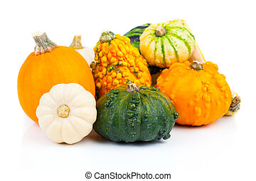 Autumn pumpkins  - Autumn pumpkins