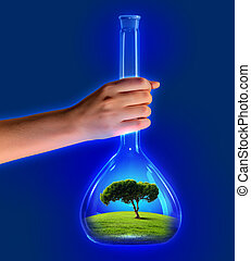 Tree in test tube - Close up image of human hand holding...