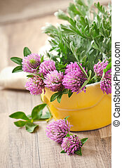 herbal herbs -sagebrush and clover