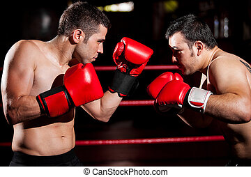 Male boxers during a fight - Strong boxer and his opponent...