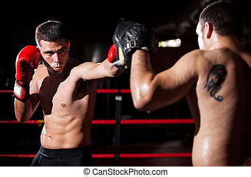 Boxer and coach training in a ring - Latin boxer and his...