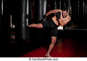 MMA Fighter training at a gym - Hispanic MMA Fighter...