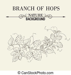 Hops with leafs isolated on sepia. Vector illustration.