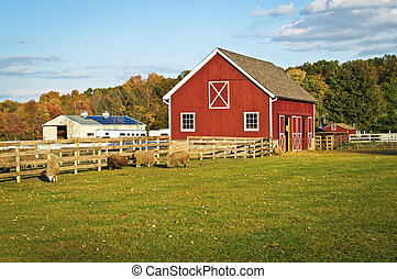 Autumn Barn - A red barn and farm animals in this scenic...