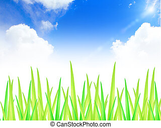 green grass with blue sky