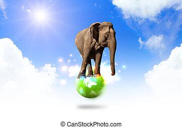 elephant balancing on world