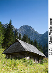 mountain hut in Tatras, Poland or beautiful summer landscape