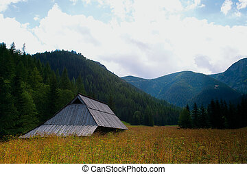 mountain hut in Jaworzynka Valley in Tatra Mountains or...