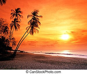 Grafton Beach at sunset, Tobago. - Grafton beach nearing...