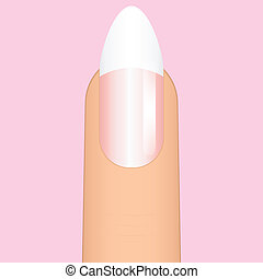 french manicure on sharp nail - Vector illustration of...