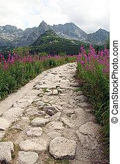 hiking path in Tatra Mountains