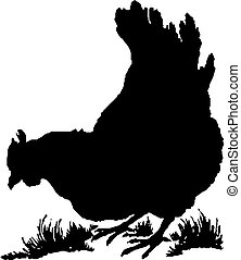 Chicken silhouette - Vector illustration of the chicken...