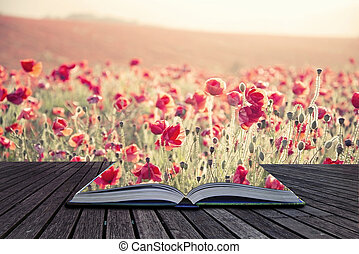 Creative concept pages of book Beautiful landscape image of Summer poppy field under stuning sunset sky with cross processed retro effect