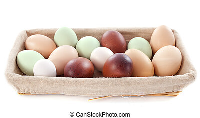 fresh eggs in front of white background