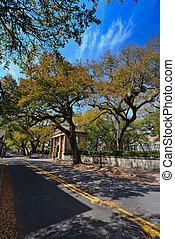 pequeño, calle, Charleston