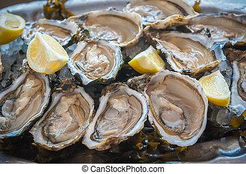 frais, huîtres