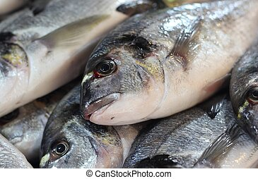 Fresh Fish for sale at a popular fish market in...