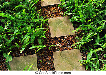 stone path in the garden
