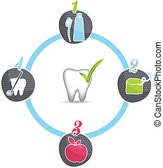 Healthy teeth tips, symbols. Brush daily, floss daily, eat...