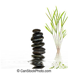 Spa Stones and Bamboo Leaf Grass - Spa stones in perfect...