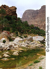 Wadi Tiwi, Sultanate of Oman