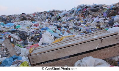 DOLLY: Heaps of garbage in landfill - Heaps of garbage in a...