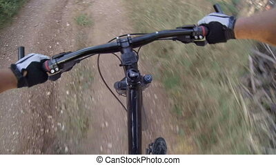 Cyclist riding mountain bike in the woods