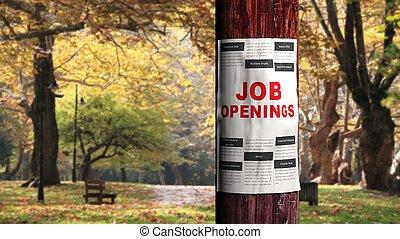 Job seeking concept, newspaper page on the tree