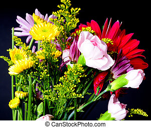Floral Arrangement - Floral arrangement isolated over a...