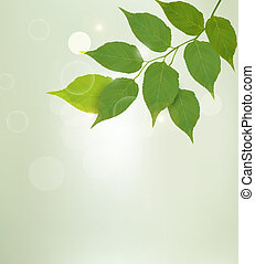 Nature background with green leaves Vector illustrtion