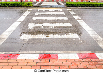 Crosswalk in the city after rain.Zebra traffic walk