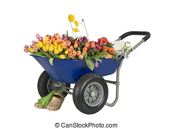 wheelbarrow of flowers - blue wheelbarrow full of flowers,...