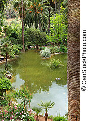 Tranquil pool in a landscaped garden