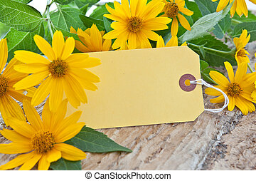 Blank paper tag and yellow coneflowers - Blank yellow paper...