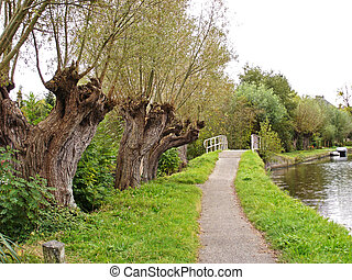 Lane with bridge and pollard willows - Pedestrian pathway...