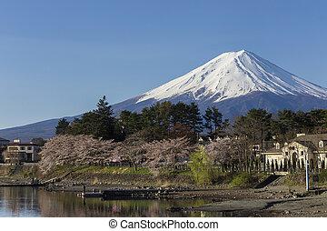 Mt Fuji at lake Kawaguchiko, Japan