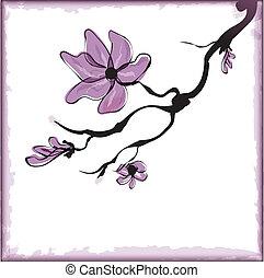 Cherry blossom ,sakura flower.