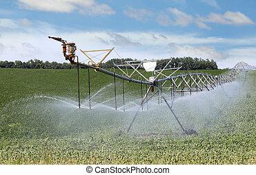 Irrigating Farm Field