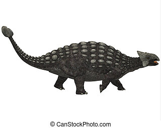 Ankylosaurus on White - A huge armored dinosaur,...