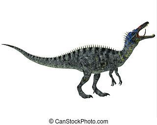 Suchomimus on White - Suchomimus was a large Spinosaurid...