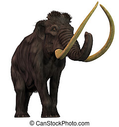 Woolly Mammoth on White - Woolly Mammoths are extinct...