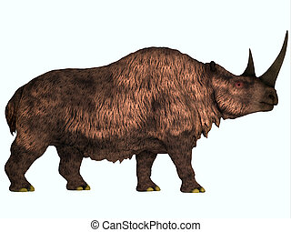 Woolly Rhino on White - Woolly Rhinoceros is an extinct...